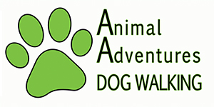 Animal Adventures Dog Walking